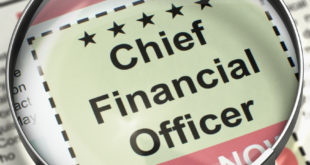 director financiero -DirectorTIC - Madrid - España