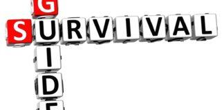 guía de supervivencia para el cio-directortic-taieditorial-España